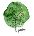 leaf palm tree vector image vector image