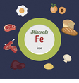 Minerals Fe infographic vector image