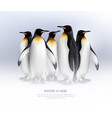 penguins realistic composition vector image vector image