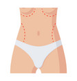 plastic surgery icon vector image vector image