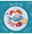 Seafood Hand Drawn vector image vector image
