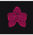 tropical orchid vector image vector image