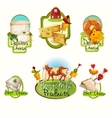 Cheese labels set vector image