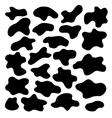 cow spots vector image