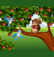 cute squirrel on the apple tree vector image vector image