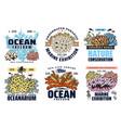 exotic fishes oceanarium marine world exhibition vector image vector image