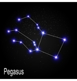 Pegasus Constellation with Beautiful Bright Stars vector image vector image