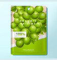 plum raisin or candy packet packaging vector image vector image