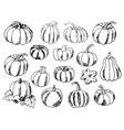 set of hand-draw doodle pumpkins vector image
