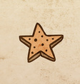 Star Cookie Cartoon vector image vector image