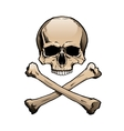 Colored human skull and crossbones vector image