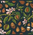 almond print vintage color vector image vector image