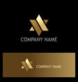 star gold abstract company logo vector image vector image