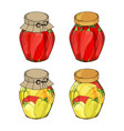 collection of different glass jars with home made vector image vector image