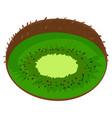 cut kiwi icon cartoon style vector image