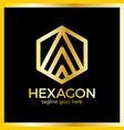 hexa letter a logo vector image vector image
