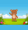 natural view with a little brown bear vector image vector image