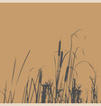 silhouette of reed bush vector image vector image