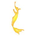 splash citrus juice realistic vector image vector image