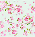 spring flowers seamless pattern background vector image