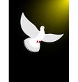 White dove flies in dark on divine light Magical vector image