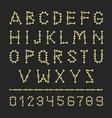 bones alphabet abc letters and numbers set vector image