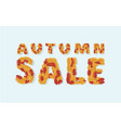 autumn sale text banner with colorful vector image vector image
