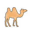 camel cartoon silhouette vector image