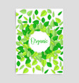 organic design card with leaves vector image vector image