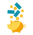 piggy bank and money vector image vector image