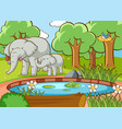 scene with elephants in forest vector image vector image