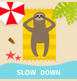 sloth sunbathing on beach towel slow down hello vector image