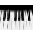 The piano vector image