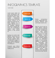 white infographic timeline vector image vector image