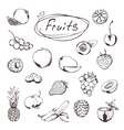 Fruits and berries sketches of icons set vector image