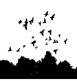 black silhouettes of a flock doves Columba livia vector image vector image