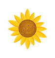 sunny plant icon flat style vector image vector image