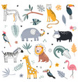 cute collection safari animals elephant vector image
