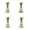 leek character cartoon style set vector image vector image