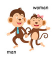 opposite man and woman vector image vector image