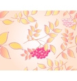 Seamless autumn background with leaves and rowan vector image vector image