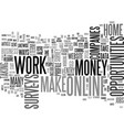 what are the ways to work at home and make money vector image vector image