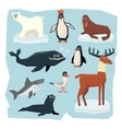 Arctic and Antarctic Animals Fish Set vector image