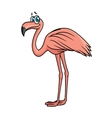 Cartoon flamingo bird character vector image