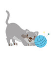cat with ball of yarn isolated icon vector image