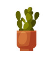 indoor houseplant in clay pot green potted vector image