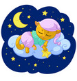 kitty sleeping cartoon of vector image