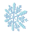 Snowflaked cartoon icon vector image