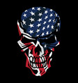 american flag skull vector image vector image