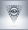 digital all-seeing eye watching you digital vector image